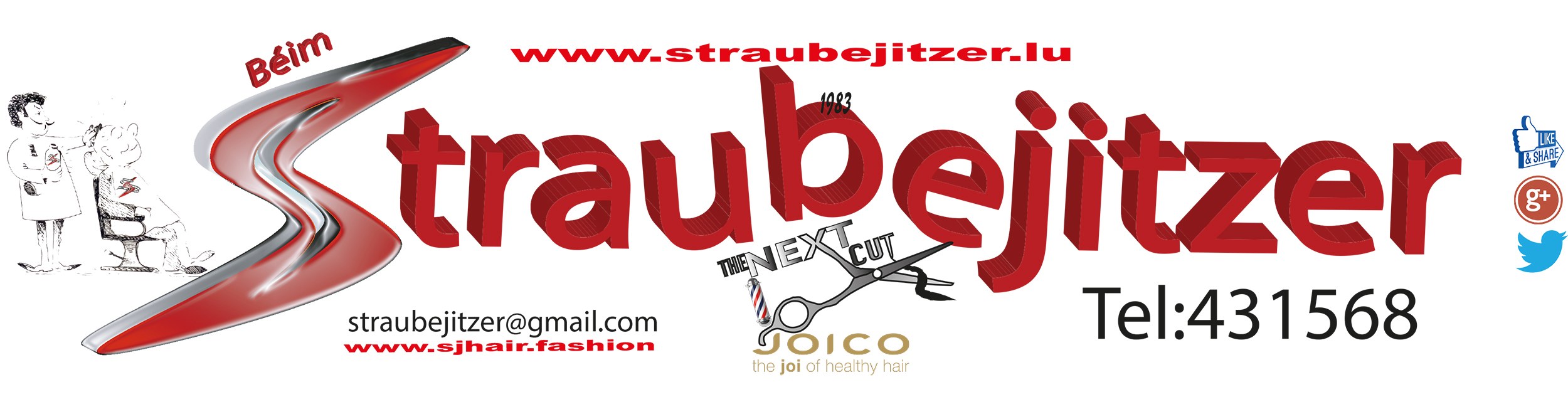 LOGO Publicitaire logo 2017 Kopie